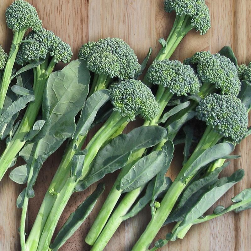 artwork-baby-broccoli